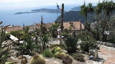 Jardin Exotique d\'Eze - Découvertes Eze - Cannes City Life